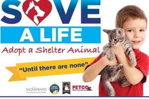 Pet Adoption Event