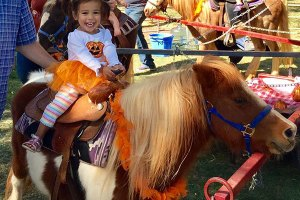 Charleigh Miles enjoys a pony ride at the Elk Grove Giant Pumpkin Festival. Photography Credit: Tracey Miles