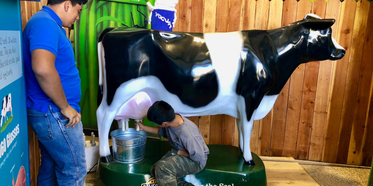 Elk Grove Students Learn About Milk In Time For National Dairy Month