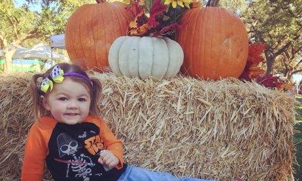Elk Grove Pumpkin Festival 2018