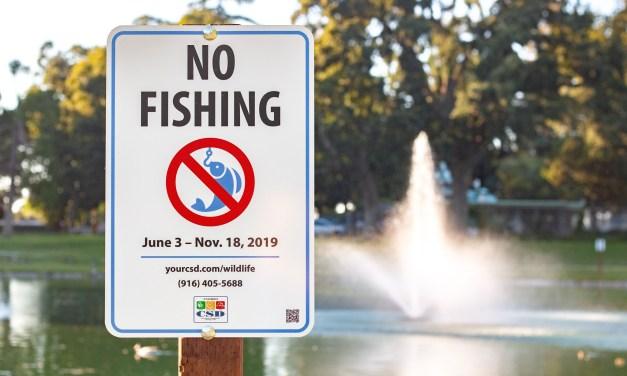 Temporary Ban On Fishing At Elk Grove Park