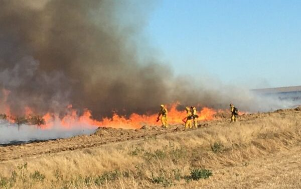 Grass Fire In Elk Grove Tamed To 100 Acres