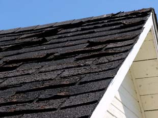 Shingle Roof Replacement, Elk River, MN