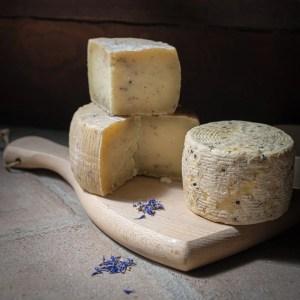 tuberum formaggio