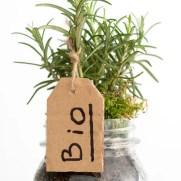 bio plant tech