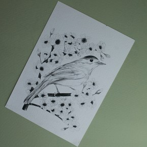 Illustrative projects for Uni-ball Video. Bird image created with uni pin fine line.