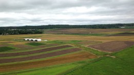 A view of gorgeous Kansas farms from the roof of the feed mill.