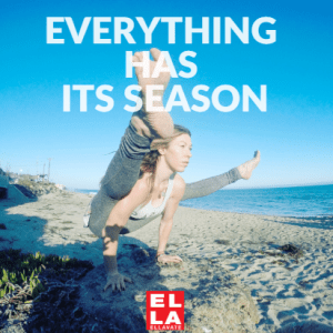 EVERYTHING HAS ITS SEASON