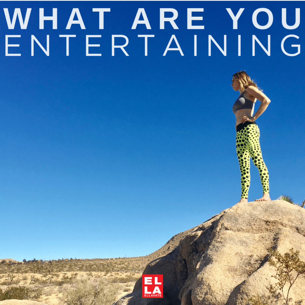 WHAT ARE YOU ENTERTAINING?