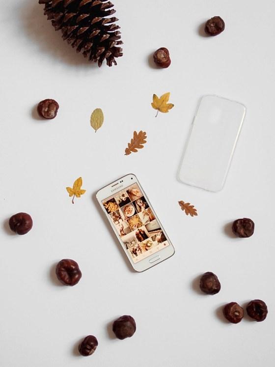 Herbst DIY | Phone Case mit bunten Blättern
