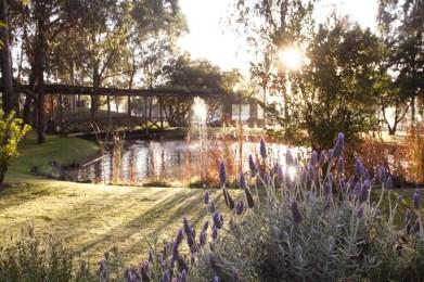 thumbnail_Hermitage garden sunrise