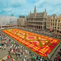 Brussels Flower Carpet Grand Place - Carpet Vidalondon