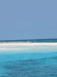 petit îlot de sable blanc, abri des sternes