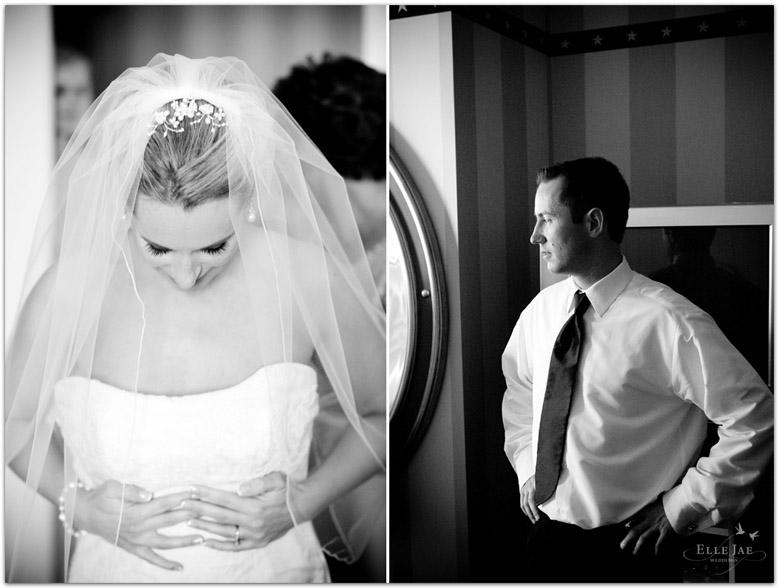 San Francisco Wedding Photography, Presidio
