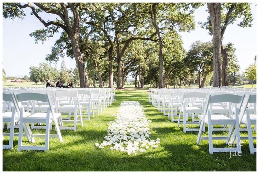 Napa Wedding-h