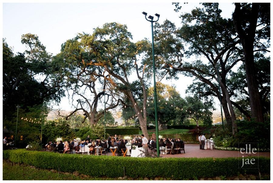 Napa Wedding-o