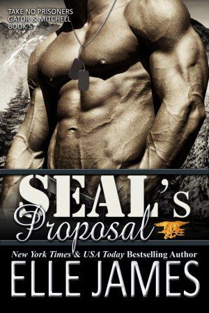 SEAL's Proposal