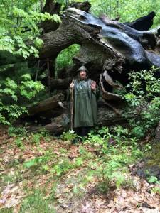 Ellen Evert Hopman standing in frontof a burned oak tree among saplings