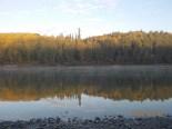 Fog on the Athabasca