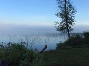 Misty morning: Jackson Lake
