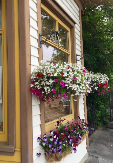 Gorgeous flower boxes on a Main Street business