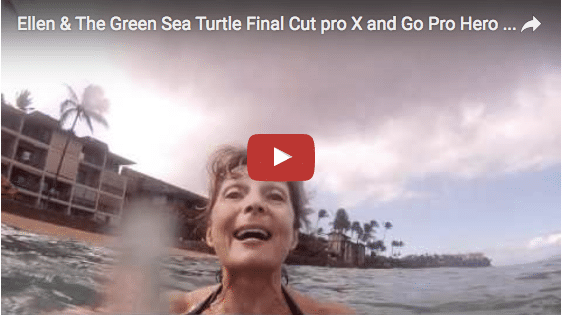 Ellen & The Green Sea Turtle