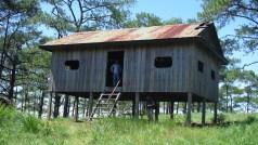 The cabine
