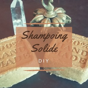 DIY Shampoing solide
