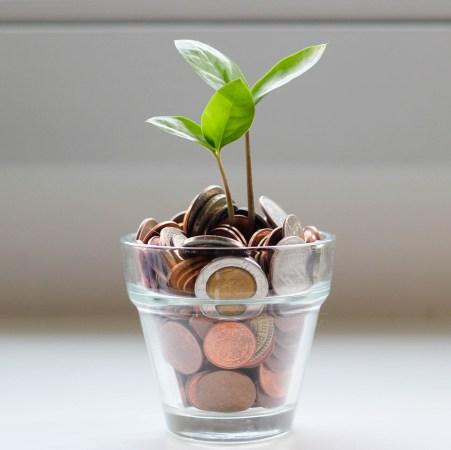 life coaching price