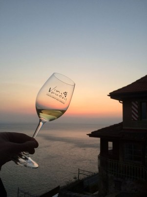 wine white Dézaley Clos de lAbbaye Vaud sunset_060314