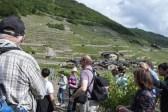 Plan Cerisier, Martigny Combe, canton Valais