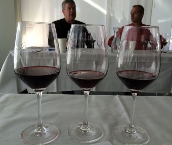 Best winery for three consecutive Merlot vintages, Cantina kopp von der Crone from Ticino: 2009, 10, 11 - most recent is wonderful, will benefit from another year or two