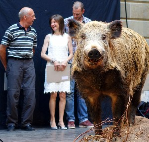 Geneva wine awards, the boar mascot, gold medal winners_170615