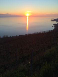 Sunset, Lake Geneva, from Epesses, 2 December 2015