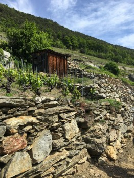Restoring old dry stone walls is a state-funded (in part) village project