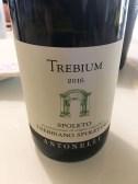 wine white Italy Montefalco Trebium Trebbiano Spoletino Antonelli 2016_261017