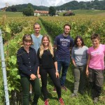 Organic wines: the high road to mainstream