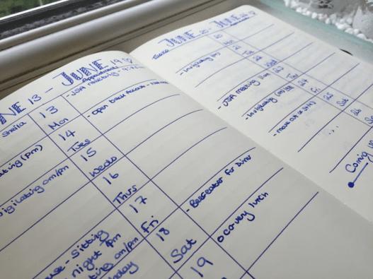Bujo Weekly Tracker