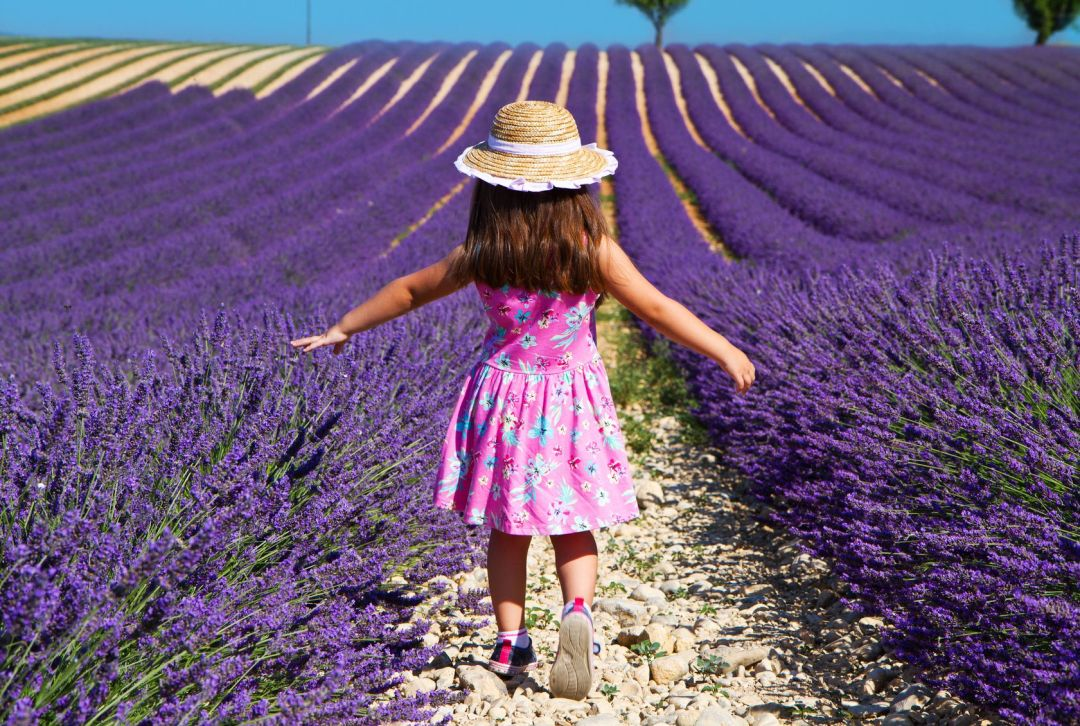 Girl in pink dress walking in lavender field