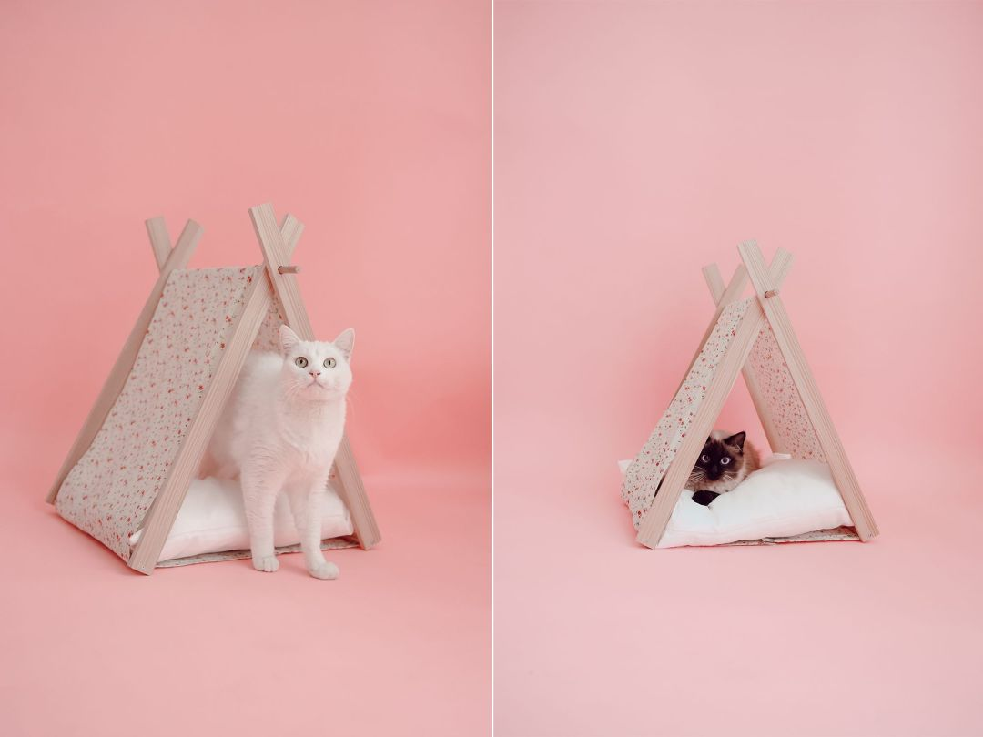 atelier diy de tipi pour chat avec vous elles en parlent. Black Bedroom Furniture Sets. Home Design Ideas