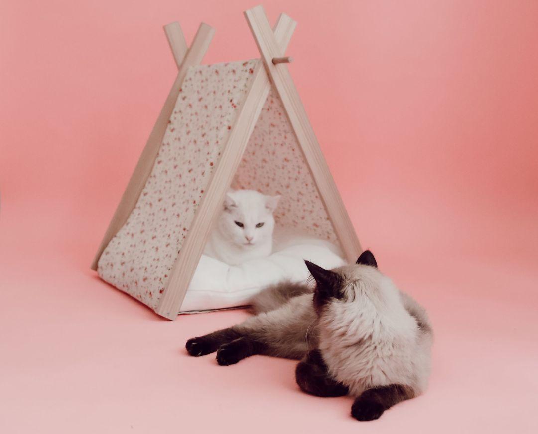 atelier diy de tipi pour chat avec vous elles en parlent. Black Bedroom Furniture Sets. Home Design Ideas