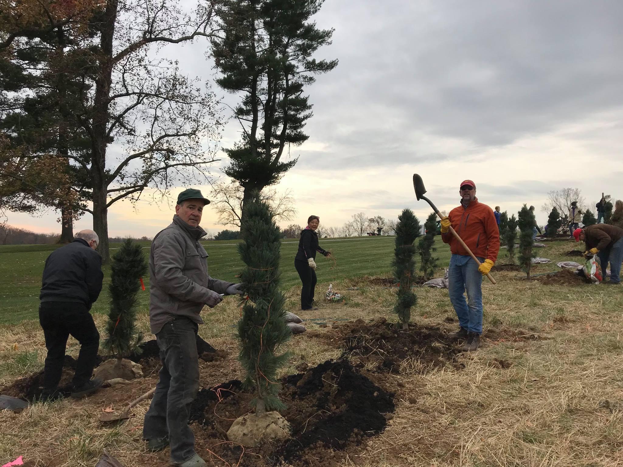 EC Rotary tree planting