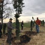 EC Rotary tree planting in 2017 at Beautiful Belmont Manor