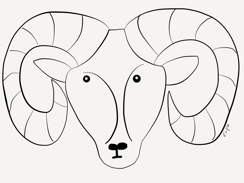 Desert Bighorn Sheep Drawing