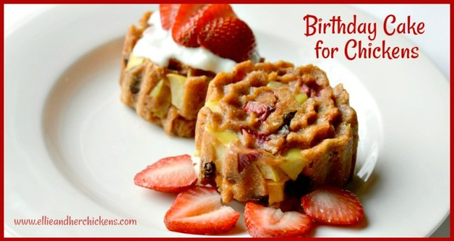 Easy And Healthy Birthday Cake For Chickens