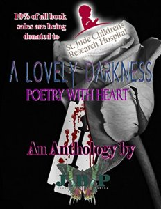 a-lovely-darkness-cover