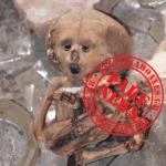 Καταρρίπτεται – Βρέθηκε Εξωγήινη Μούμια Σε εγκαταλειμμένο Εργαστήριο