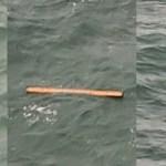 «Φωτογραφίες από τα συντρίμμια του Α320 της Egypt Air» – Καταρρίπτεται