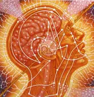 BODY, MIND, SPIRIT Detail:Center of 3 panels. SACRED MIRRORS, Alex Grey, 1985