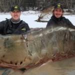 Ψαράδες ΔΕΝ έβγαλαν γαρίδα που φτάνει για γαριδομακαρονάδα ενός χρόνου.